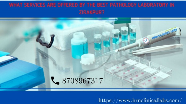 What Services Are Offered By The Best Pathology Laboratory In Zirakpur?