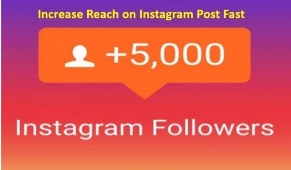 Should You Buy 5000 Instagram Followers to Increase Reach on Instagram Post Fast?